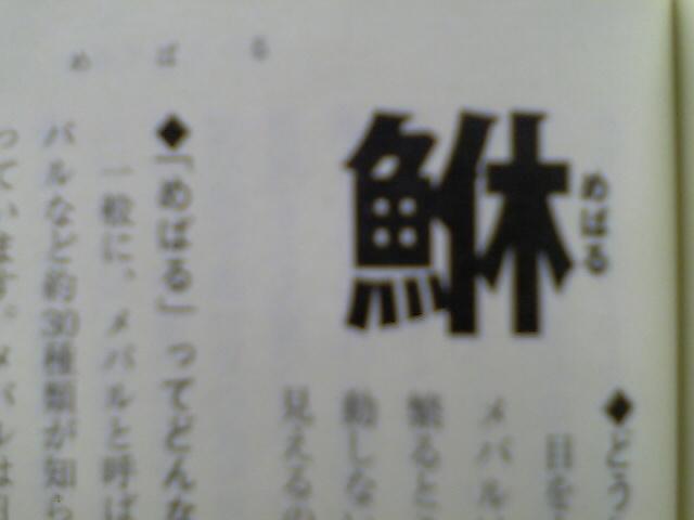 Vfsh0080_2